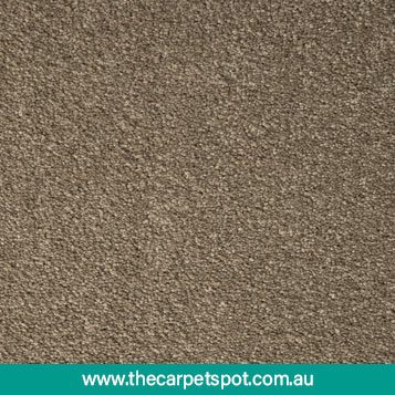 tuftmaster-carpets---soft-appeal--b---4
