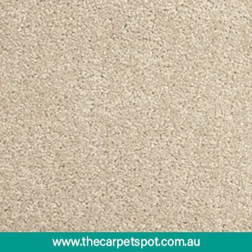 tuftmaster-carpets---willow-grove---1