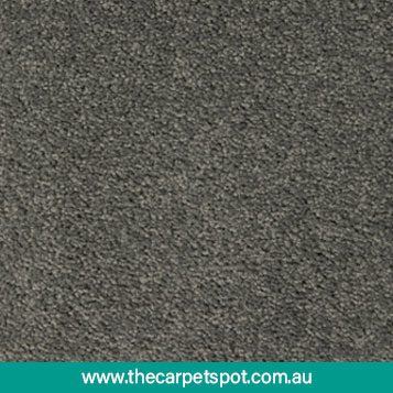 tuftmaster-carpets---willow-grove---2